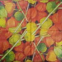 Салфетка декупажная, Цветы и растения, 33х33 см, 0934