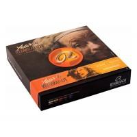 Набор масляных красок Royal Talens Rembrandt Year 10 цв. по 15 мл