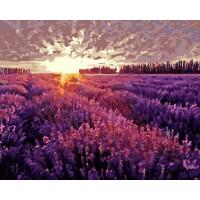 Картина по номерам BrushMe Лавандовое поле на закате 40х50см