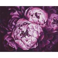 Картина по номерам Идейка Буйство красок 40х50см
