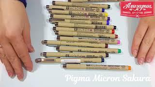 Лайнеры (Liner) Pigma Micron Color Sakura