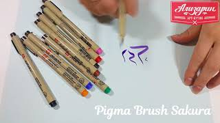 Видео обзор лайнеров Pigma Brush, Sakura